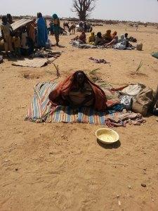 Nine, IDPs at Tawila, April-May 2014